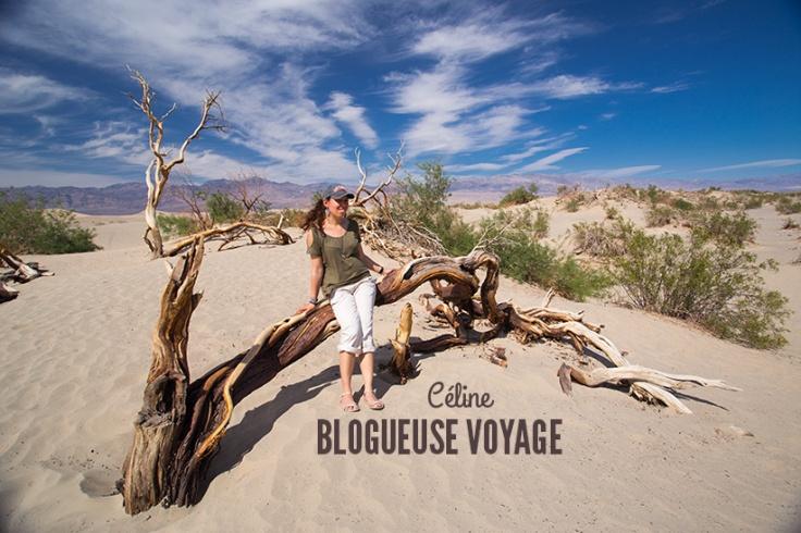 blog-voyage.jpg